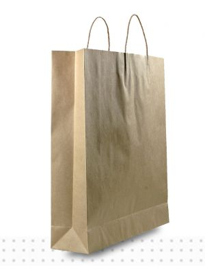 Brown Paper Bags LARGE Regular