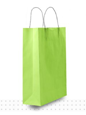 Coloured Paper Bags SMALL Lime Regular