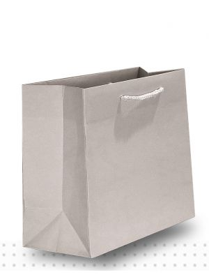 Gift Bags SMALL Matte Platinum Deluxe