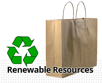 Sustainable Paper Bags